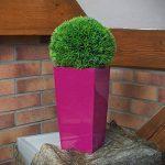 Haut cache-pot Urbi Tour pot de fleur 26 L, creme couleur de la marque Prosperplast image 3 produit