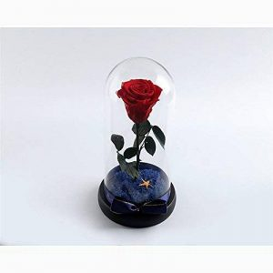 HOOM-Ornements de verre rose fleur éternelle amie masque Saint-valentin cadeau,Red de la marque HOOM image 0 produit