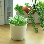KUUQA 10pcs Unpotted Fleurs Artificielles plantes à suspendre tiges plantes pour la décoration de la maison d'intérieur Jardin DIY consommables de la marque KUUQA image 2 produit