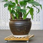 Mobile en bambou Pot chariot support de pot Dessous de Verre avec 4roues Rolling Base 25x25CM de la marque DreamColor image 4 produit