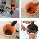 Ounona Lot de 10mini-pots en terre cuite - pots fleurs/cactus - idéal pour plantes, loisirs créatifs, mariages, chambres d'enfants - 3 x 3cm de la marque OUNONA image 4 produit