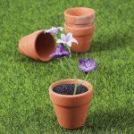 OUNONA Pots en terre cuite Pot de fleur Plante succulente Cactus 10 pièces de la marque OUNONA image 2 produit