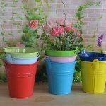 Outflower Lot de 12 mini Seau en métal Pot de fleur à suspendre balcon Jardin Pot de fleurs Cadeau Couleur aléatoire de la marque Outflower image 2 produit