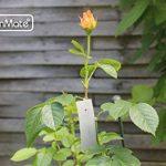 pancarte pour jardin TOP 4 image 1 produit