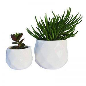 Parva Garden Petites jardinières modernes succulentes, jardinières de fenêtre mignon pour Cactus, ensemble de deux pots géométriques (2, blanc) de la marque Parva Garden image 0 produit
