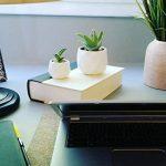 Parva Garden Petites jardinières modernes succulentes, jardinières de fenêtre mignon pour Cactus, ensemble de deux pots géométriques (2, blanc) de la marque Parva Garden image 1 produit