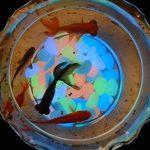 Pawaca Lot de 100galets phosphoresecents pour jardin, chemins, cour, Pot de fleurs, aquarium, piscine-6couleurs de la marque Pawaca image 4 produit