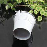 petit pot zinc TOP 6 image 2 produit