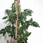 Porte-plante à suspendre en macramé, pour intérieur ou extérieur sur balcon - Convient aux pots ronds ou carrés 2P Pulley Hanger noir de la marque Esmartlife image 1 produit