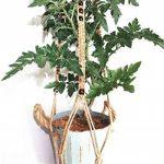 Porte-plante à suspendre en macramé, pour intérieur ou extérieur sur balcon - Convient aux pots ronds ou carrés 2P Pulley Hanger noir de la marque Esmartlife image 2 produit