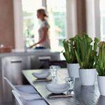 pot à fleur blanc TOP 5 image 3 produit