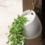 pot céramique blanc TOP 6 image 4 produit