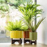 pot de fleur avec support TOP 10 image 3 produit