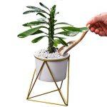Pot de fleurs pour l'intérieur Y&M(TM) -11,6cm - Moderne -Pot rond en céramique blanche avec support en métal -Pour les plantes succulentes, les plantes grimpantes, les cactus White+Gold de la marque Y&M image 2 produit