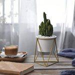 Pot de fleurs pour l'intérieur Y&M(TM) -11,6cm - Moderne -Pot rond en céramique blanche avec support en métal -Pour les plantes succulentes, les plantes grimpantes, les cactus White+Gold de la marque Y&M image 3 produit