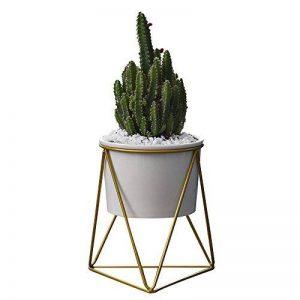 Pot de fleurs pour l'intérieur Y&M(TM) -11,6cm - Moderne -Pot rond en céramique blanche avec support en métal -Pour les plantes succulentes, les plantes grimpantes, les cactus White+Gold de la marque Y&M image 0 produit
