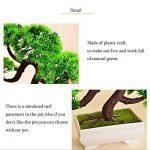 pot de plante intérieur TOP 8 image 2 produit