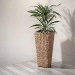 Pot à fleur Gartenfreude en jacinthe d'eau tressée avec insert en plastique étanche, coleurs naturelles, 28 x 28 x 60 cm de la marque Weles GMBH image 1 produit