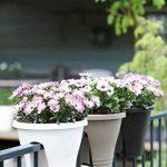 pot jardinière pour balcon TOP 0 image 2 produit