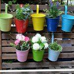 Pots de Fleurs, RIOGOO Pot de fleur Suspendus,Pots de Jardin Balcon Seau en métal Porteurs de fleurs - Crochet amovible (8 pièces) de la marque RIOGOO image 1 produit