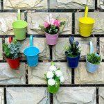 Pots de Fleurs, RIOGOO Pot de fleur Suspendus,Pots de Jardin Balcon Seau en métal Porteurs de fleurs - Crochet amovible (8 pièces) de la marque RIOGOO image 2 produit