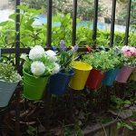 Pots de Fleurs, RIOGOO Pot de fleur Suspendus,Pots de Jardin Balcon Seau en métal Porteurs de fleurs - Crochet amovible (8 pièces) de la marque RIOGOO image 3 produit