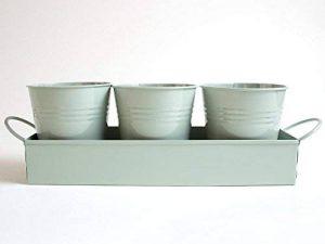 Pots à herbes sur un plateau–Idéal pour la croissance des plantes aromatiques ou de fleurs à la maison sur votre Rebord de fenêtre de la marque dill and mint image 0 produit