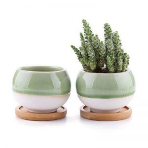 Rachel's 7.5CM Pots En Céramique Série de balle /Plante Succulente/Plante en Pot/Cactus/Pot De Fleur/Cultiver avec Plateau en Bambou 1 Paquet de 2 de la marque T4U image 0 produit