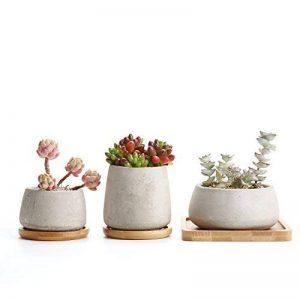 Rachel's Ciment Série Sucuulent Cactus Pots de fleurs Jardinières Conteneurs Boîtes de Fenêtre avec Plateau en Bambou 1 Paquet de 3 de la marque T4U image 0 produit