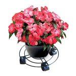 Rokoo Caddy extérieur de plante d'intérieur avec des roues Heavy Duty Fer en pot usine fleur Pot Rack Stand titulaire de la marque Rokoo image 2 produit