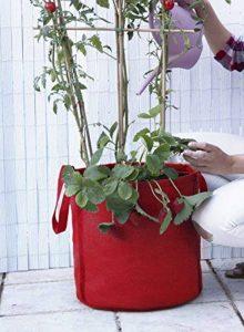 Sac de culture, sac potager Veggie Bag, Tomates, fraises...couleur rouge. 35x36 cm. de la marque Botanyland image 0 produit