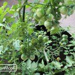 sac géotextile jardinière TOP 8 image 2 produit