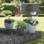 Scheurich 53379 250/30 Wave Globe Pot de Fleurs Plastique Granit Noir 30 x 30 x 22 cm de la marque Scheurich image 1 produit