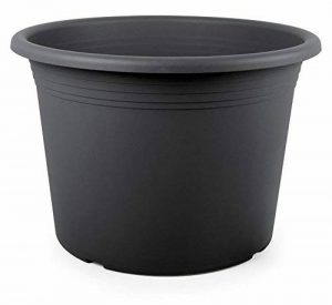Smart Planet® Haute Qualité Pot/Pot flórina Roue ronde – Pot en plastique 20 cm – Anthracite de la marque Smart Planet image 0 produit
