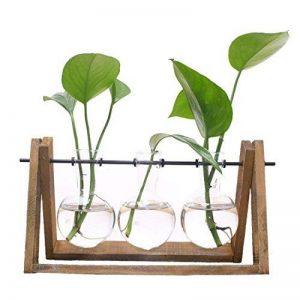 SODIAL Terrarium de Plante avec Vase en verre pour la decoration de la maison, Recipient de radis vert(3 terrariums) de la marque SODIAL image 0 produit