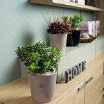 Soendgen Cache-pot de fleurs en céramique, Dallas Style, Argile, weiß, 14 x 14 x 13 cm de la marque Soendgen Keramik image 1 produit