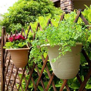 Sungmor haute qualité solide et résistant Épaissi Plastique Pot de fleurs à suspendre au mur, Creative Stockage de l'eau Pot de fleurs, intérieur ou extérieur décoratifs à découper Fleur plantation Pot de fleurs Large(25.7cmL*22cmW*22.2cmH) beige de la ma image 0 produit