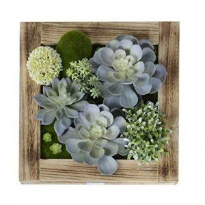 Support mural 3D Fleurs Artificielles Succulente plantes mousse sur le vase avec cadre en bois Forme Fleurs Blanc pierre Décoration, 30x 30cm de la marque Artificial Flower-Wall Hanger image 0 produit
