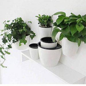support mural plante TOP 6 image 0 produit