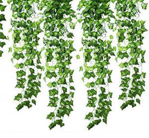 support mural plante TOP 8 image 0 produit