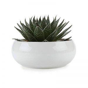T4U 16.5CM Pots En Céramique Base Blanc Série/Plante Succulente/Plante en Pot/Cactus/Pot De Fleur/jardinière/Cultiver de la marque T4U image 0 produit