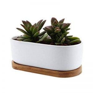T4U 17CM Pot de Fleur en Céramique de Conception Ovale Série et Plateau de Bambou/Pots de Cactus/Plante en Pot de la marque T4U image 0 produit