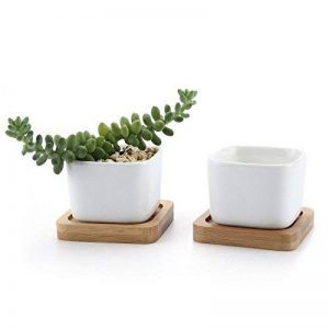 T4U 5.3CM Pot de Fleur en Céramique de Forme Carré /et Plateau de Bambou/Pots de Cactus/Plante en Pot/Cultiver 1 Paquet de 2 de la marque T4U image 0 produit
