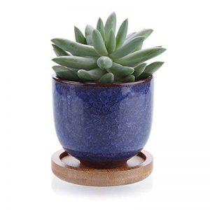 T4U 6.3cm Ciseaux de Glace en Céramique Zisha Raised Série Pot de Plantes Succulentes Pot de Cactus Plante Pot de Fleurs Récipient Planteur Bleu avec des Plateaux en Bambou de la marque T4U image 0 produit