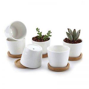 T4U 6.5CM Pot de Fleur en Céramique de Forme Rond /et Plateau de Bambou/Pots de Cactus/Plante en Pot/Cultiver 1 Paquet de 6 de la marque T4U image 0 produit