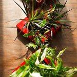tableau végétal à faire soi-même sans plantes technologie mur végétal (Blanc nacré) de la marque Nina végétal image 5 produit