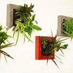 tableau végétal à faire soi-même sans plantes technologie mur végétal (Blanc nacré) de la marque Nina végétal image 3 produit