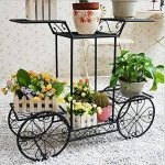 Étagère de Pots de Fleurs Plantes Chariot avec 6 Corbeilles en Métal Fer Forge pour Décoration Maison Balcon Terrasse Jardin Entrée -Dazone®-Noir de la marque Dazone image 1 produit