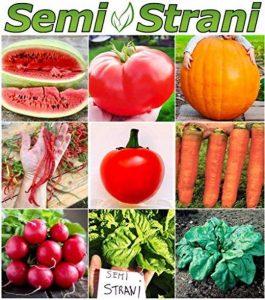 étiquettes semis potager TOP 4 image 0 produit