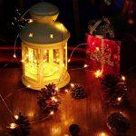 Tuokay 22M 200 LED Guirlande de Lumières 8 Modes de Lumières Imperméables de Cuivre de Fil pour la Décoration de Vacances, Mariages, Noël, Extérieur et Intérieur (Blanc Chaud) de la marque Tuokay image 4 produit